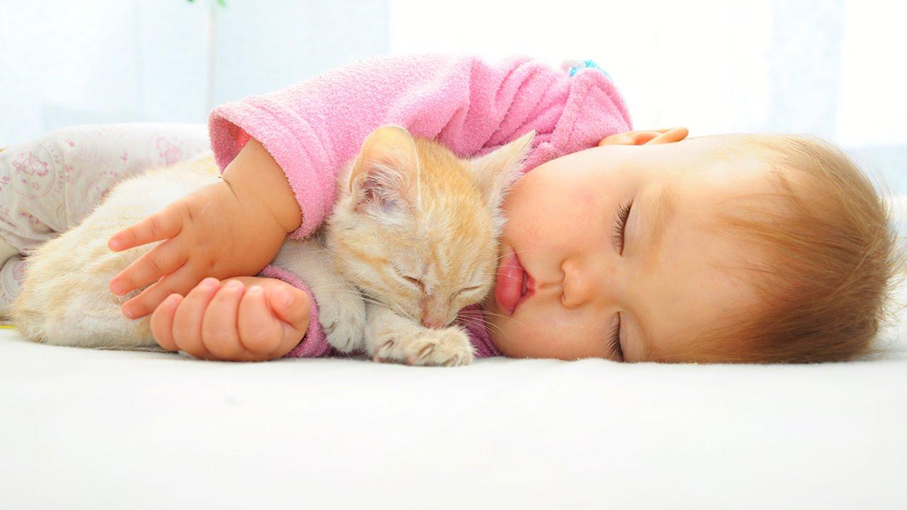 Ребенок спит с котом