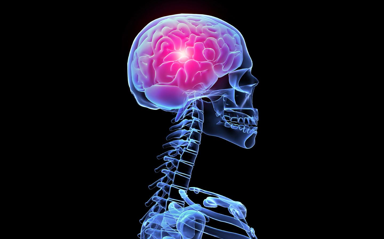 Рак головного мозга: симптомы, стадии (степени),  лечение, прогноз