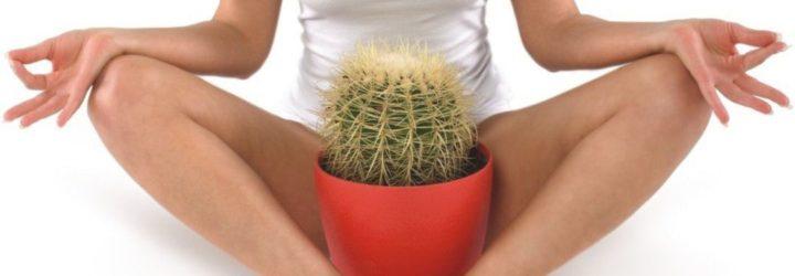 Женщина с кактусом
