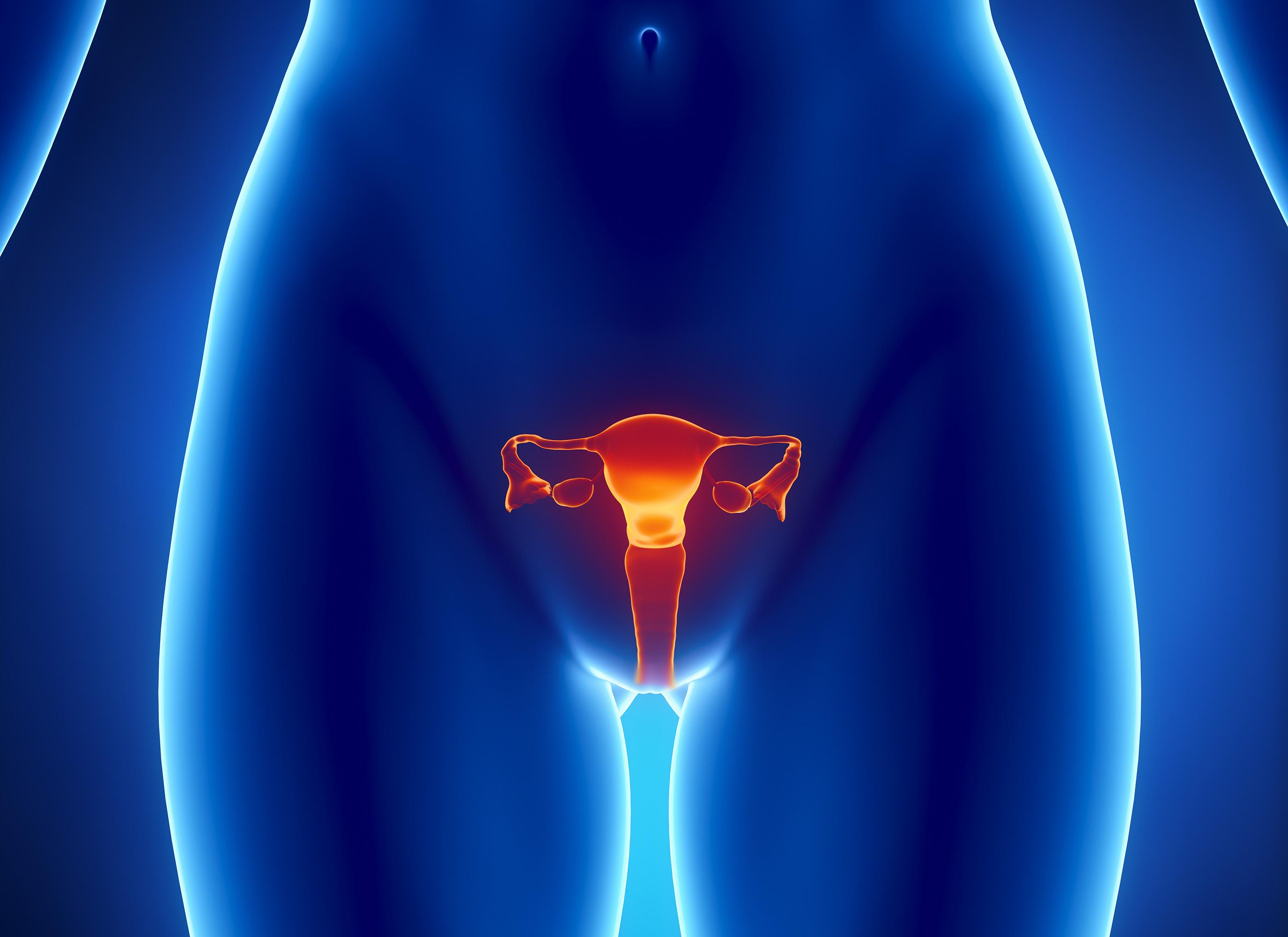 Гарднерелла у женщин: причины, симптомы, лечение гарднереллеза