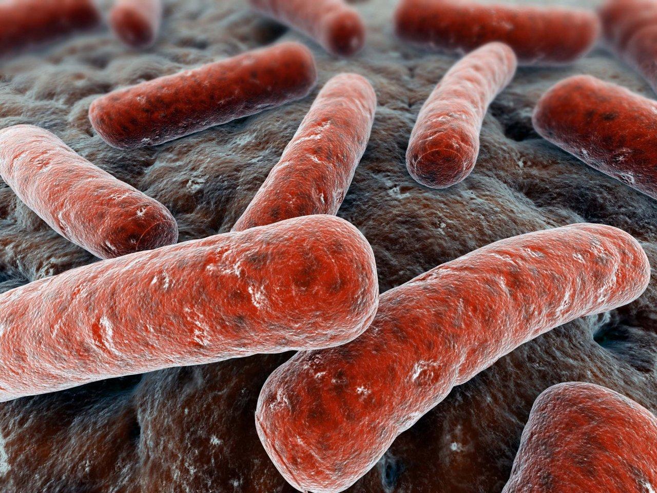 Гарднерелла у мужчин: причины, симптомы, лечение гарднереллеза