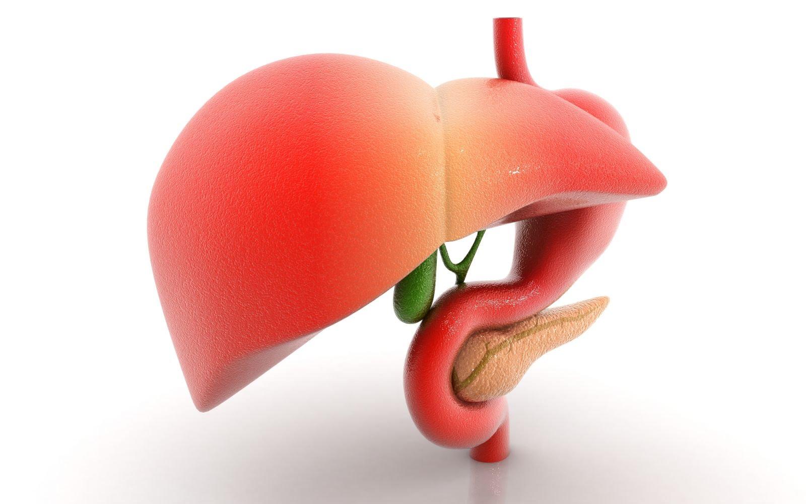Желчекаменная болезнь: симптомы, лечение, диета