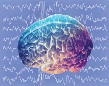 мозг и электроволны