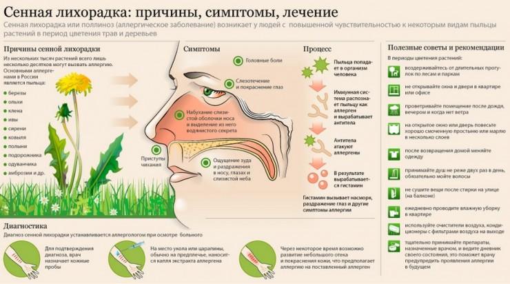 есть ли аллергия на цветы