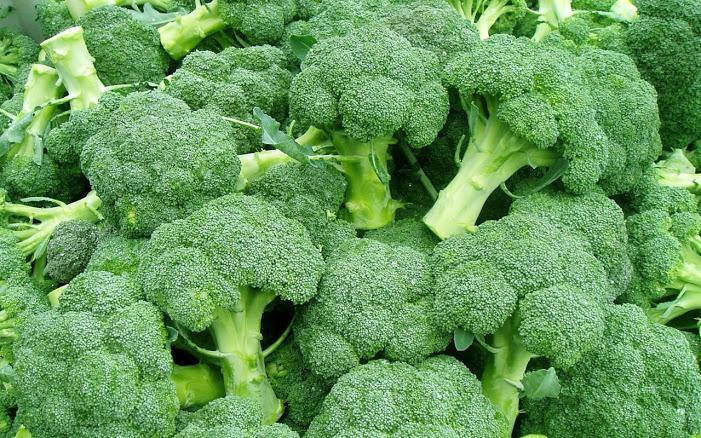Чем полезно брокколи