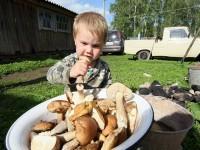 Ребёнок держит в руке гриб