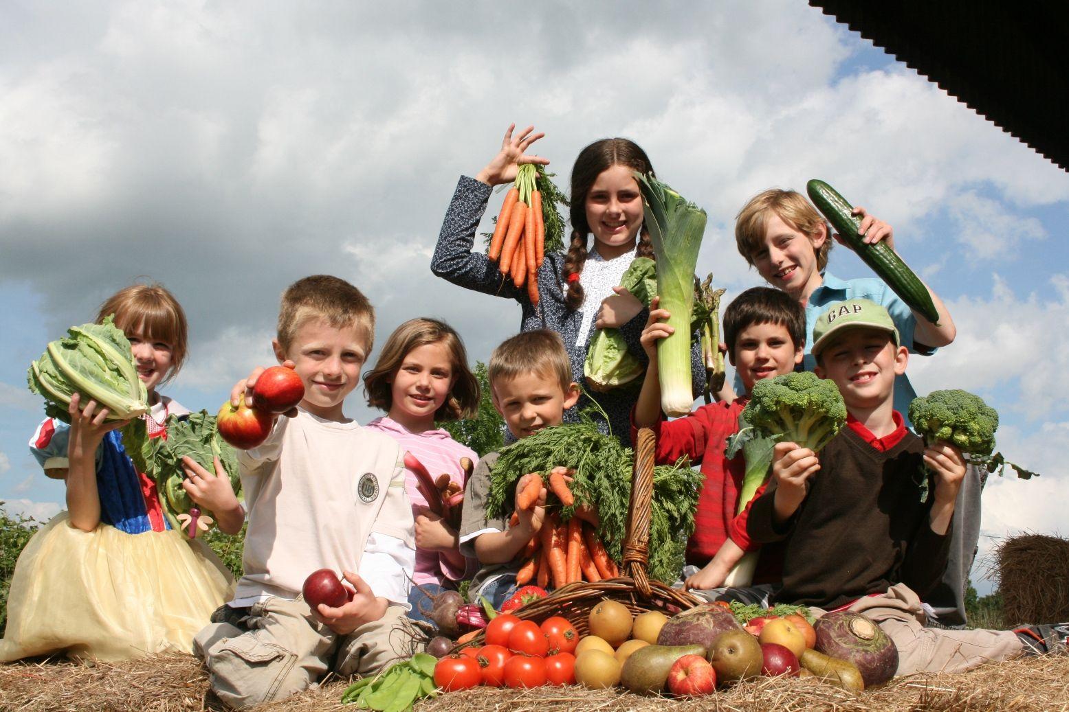 Вред и польза вегетарианства для детей: мнение педиатра
