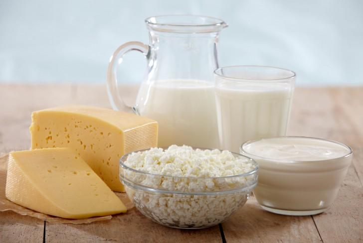 молоко, творог, сметана, кефир, сыр