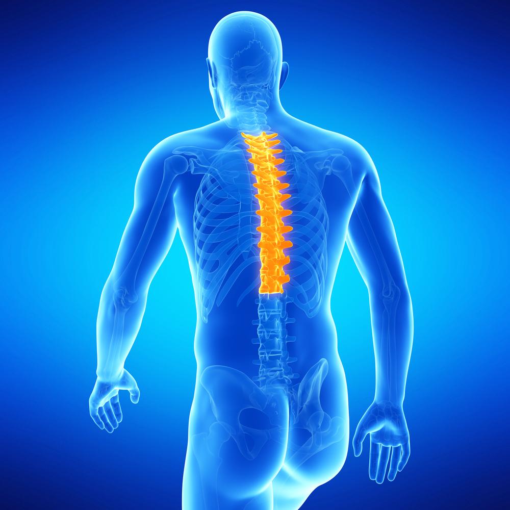 Остеохондроз грудного отдела позвоночника: основные симптоматические проявления