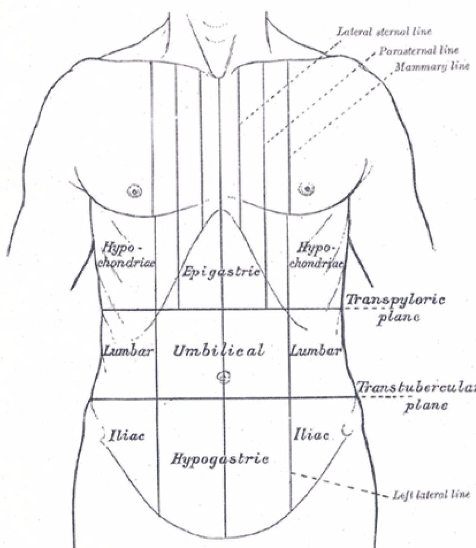 Кишечная (толстокишечная) метаплазия слизистой желудка: лечение