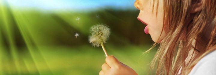 Поллинозы, или аллергия на пыльцу: причины, сопутствующие болезни, симптомы, лечение