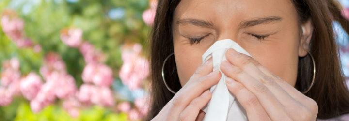 Глобальное потепление становится основной причиной аллергии