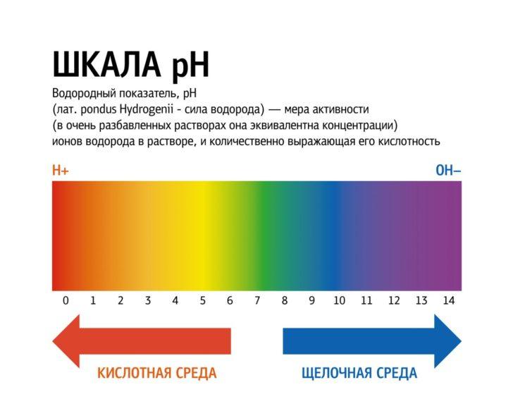 Шкала рН крови