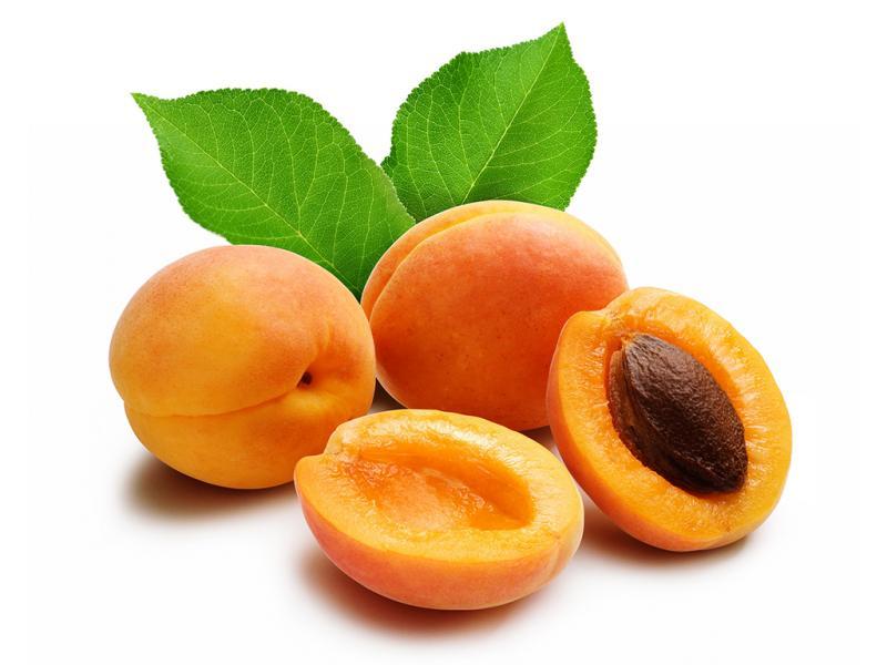 Польза абрикосов для здоровья будущей мамы