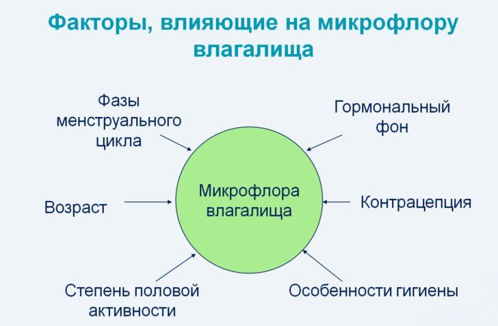 Факторы, влияющие на микрофлору влагалища