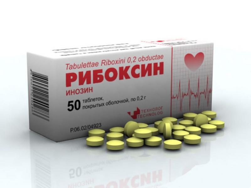 Заипротив применения Рибоксина в период беременности