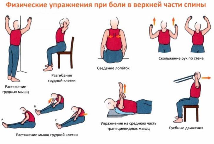 Лечебная гимнастика при хондрозе грудного отдела
