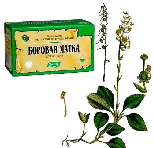 Травы от бесплодия у женщин монастырский чай лечение отварами и настоями