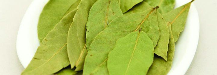 Лечение суставов лавровым листом в домашних условиях