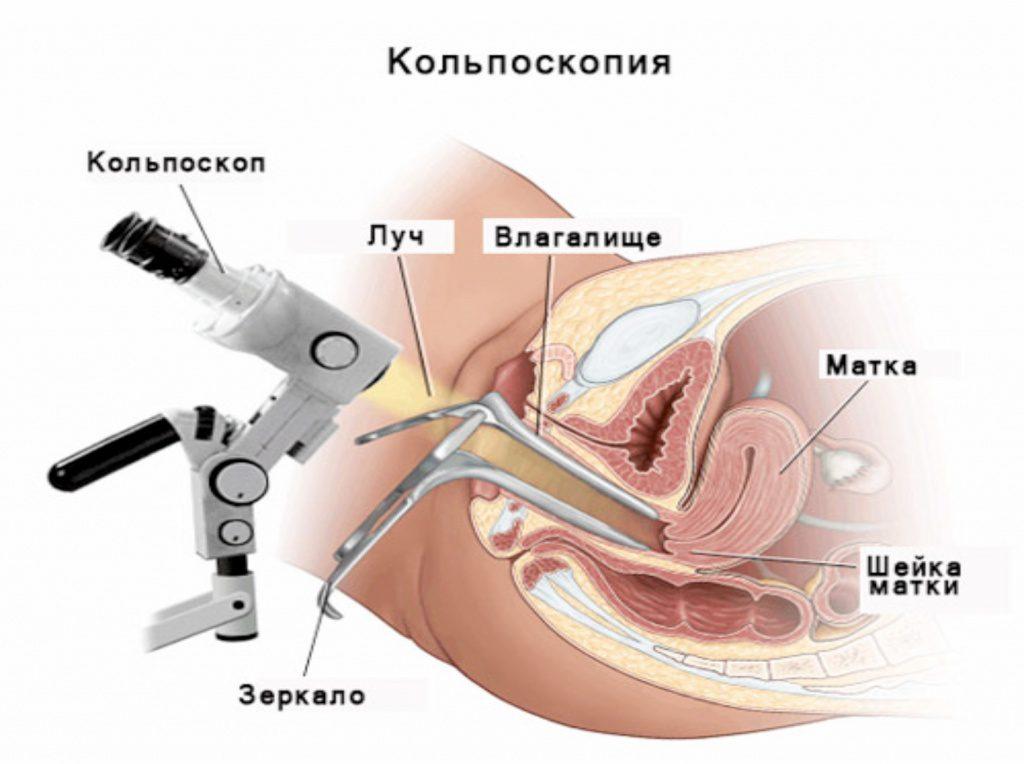 zhenskaya-parfyumeriya-ot-eyvon