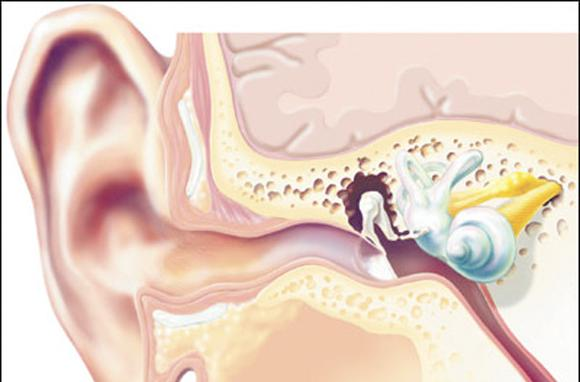 Наружное, среднее, внутреннее ухо