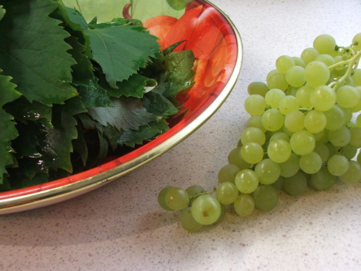 Виноградные листья при лечении диабета