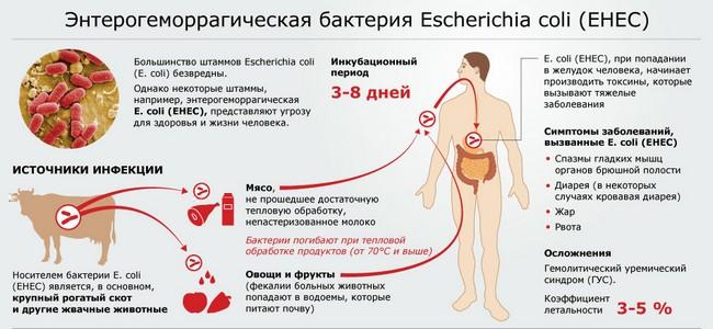 Гемолитико-уремический синдром, типичная форма