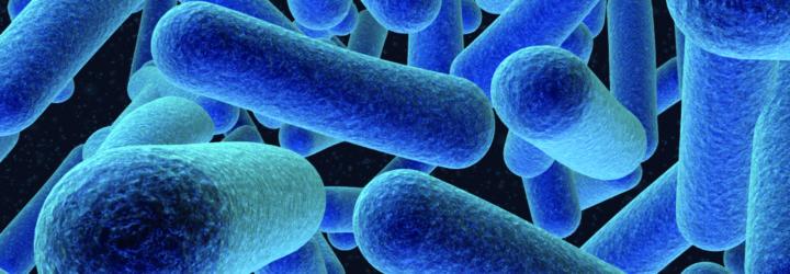 Как передаётся псориаз от человека к человеку, причины и факторы проявления болезни