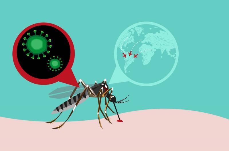 Лихорадка Денге — опасная тропическая болезнь