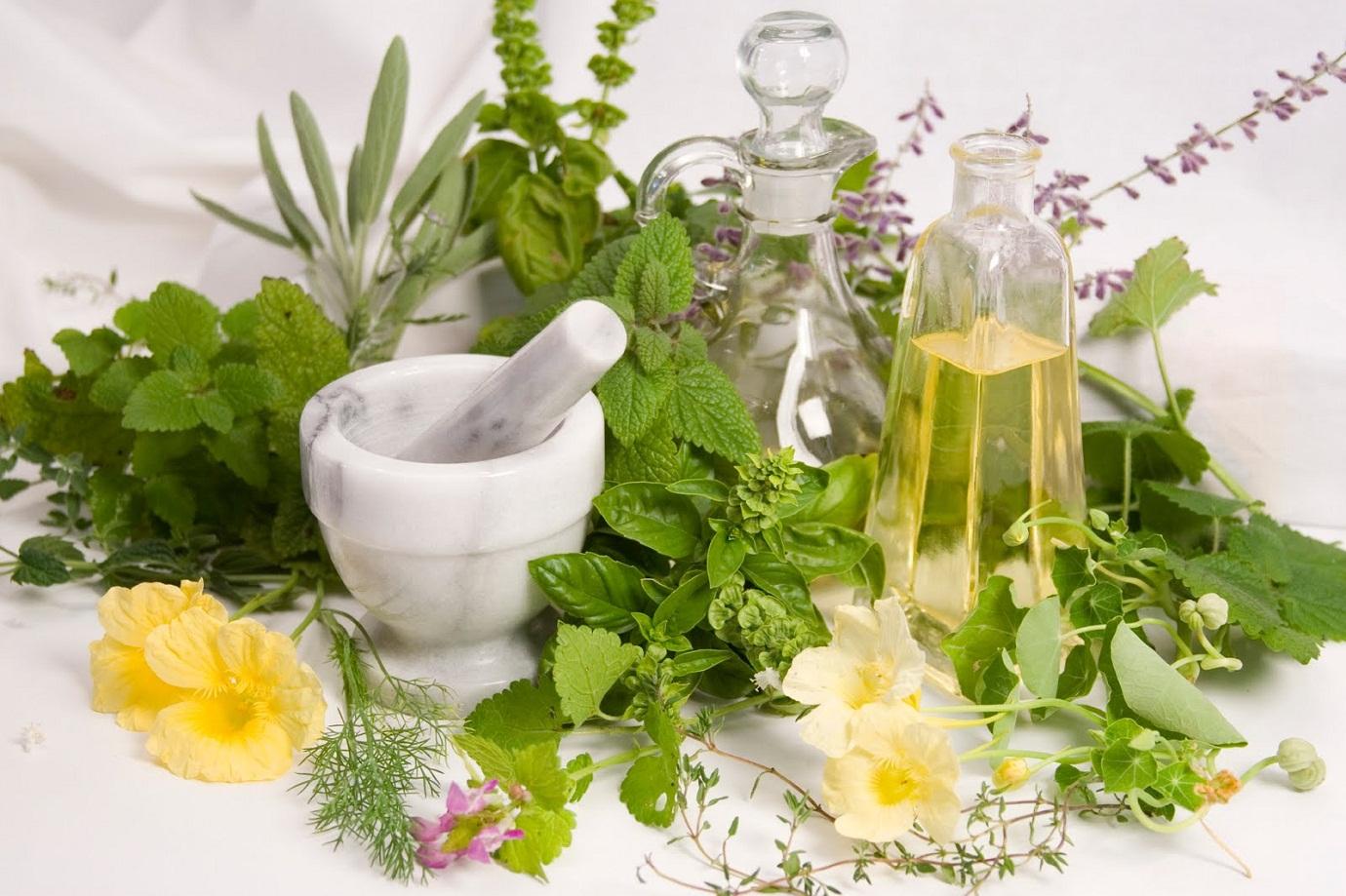 Лечение пиелонефрита с помощью травяных сборов