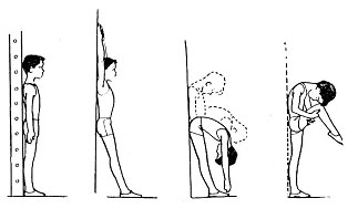 Корригирующая гимнастика у стены
