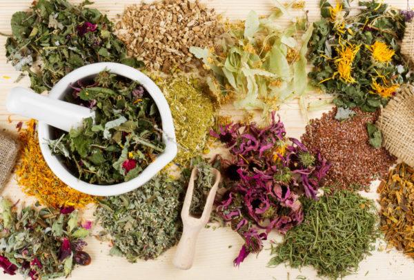 Различные травы и растения