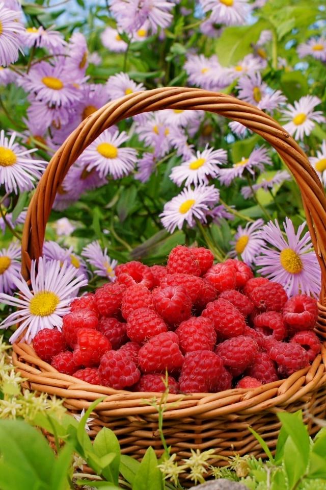 Малина в корзине на фоне цветов