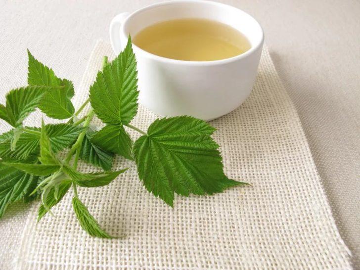 Малиновые листья и настой из них в белой чашке