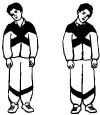 Калькулятор индекса массы тела ребенка до года