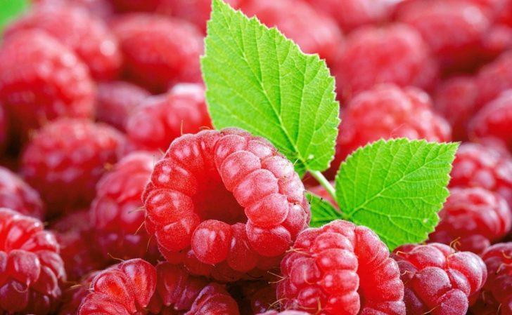 Ягоды и листики малины