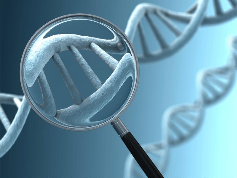 Синдром Альпорта: многогранная наследственная болезнь