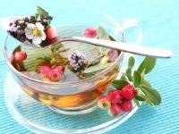 Зелёный чай с ягодами брусники