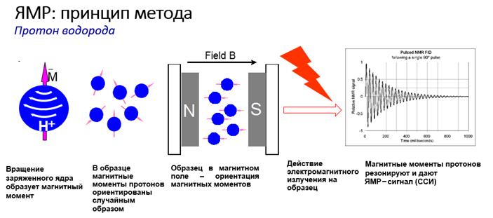 Принцип метода ЯМР (схема)