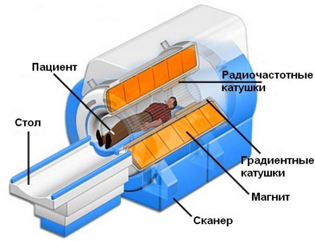 Устройство магнитно-резонансного томографа (схема)
