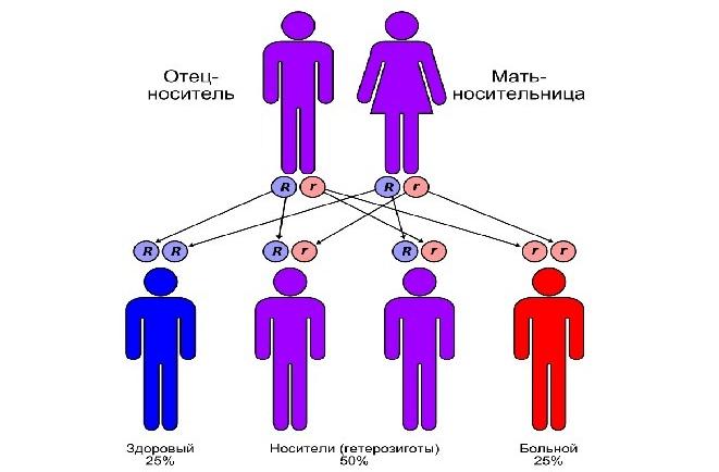 Аутосомно-рецессивный тип наследования (схема)
