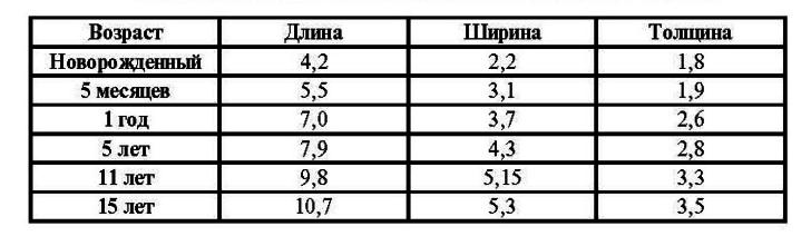 Размеры почек у детей в зависимости от возраста