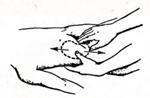Схема пальпации по Гленару