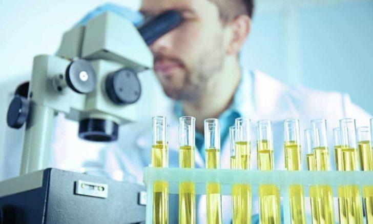 Лаборант с микроскопом и пробирки с мочой