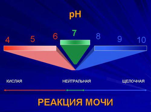 рН-метрия мочи