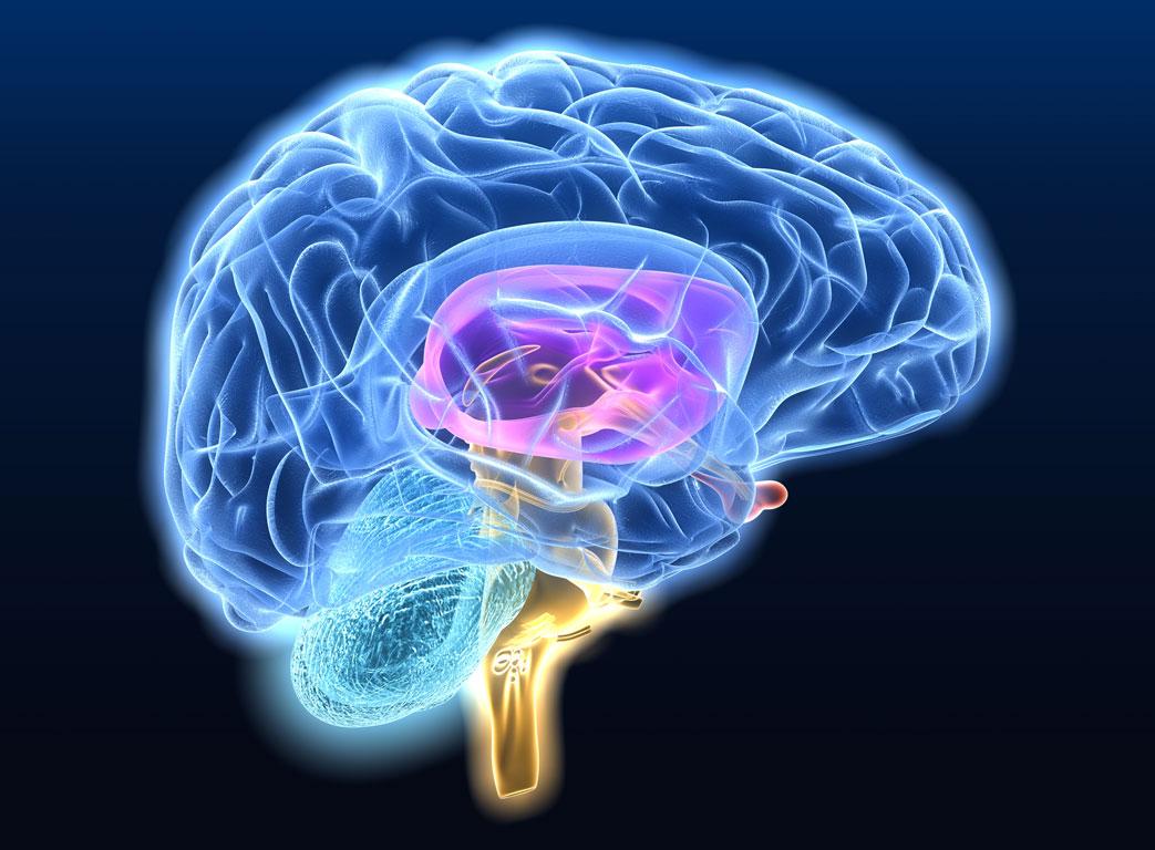 Рак мозга: диагноз или приговор