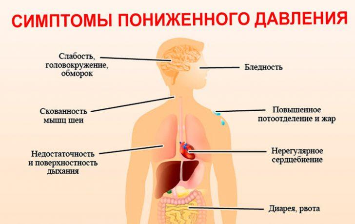 Влияние низкого АД на организм (схема)