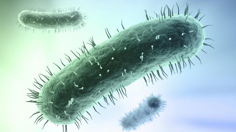 Микоплазмоз: коварный мужской недуг
