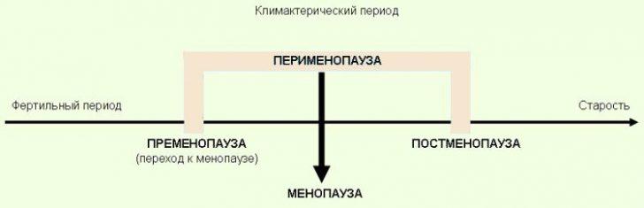 Этапы климактерического периода