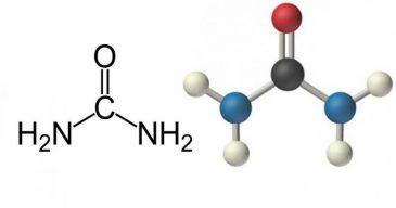 Формула и структура мочевины